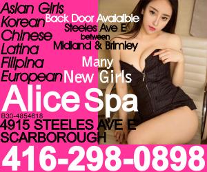 5 AliceMP300x250.png