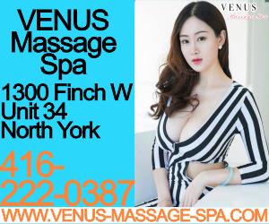 7 VenusMP300x250.png