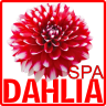 DAHLIA Spa, 4710 Yonge St, 2nd Floor (South of Sheppard) JP CH KR;  REOPENING Wednesday June 24th!